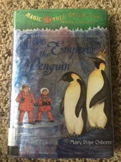 南極のペンギンのエピソード