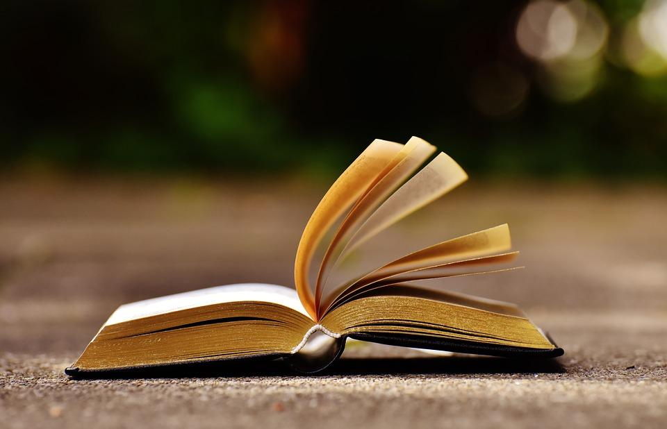 年間100冊の本を読む子供(前編)